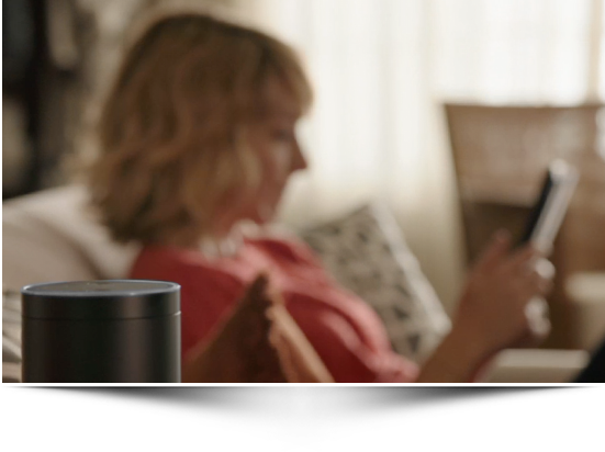 Amazon Echo: a Recipe for the Future or a Dud in the Making?