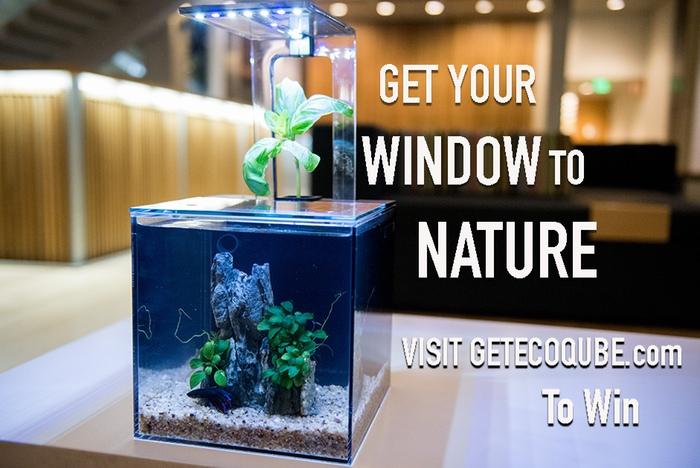 Ecoqube C: Experience Nature