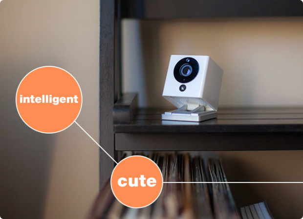 Spot: a Whole New Smart Home Camera